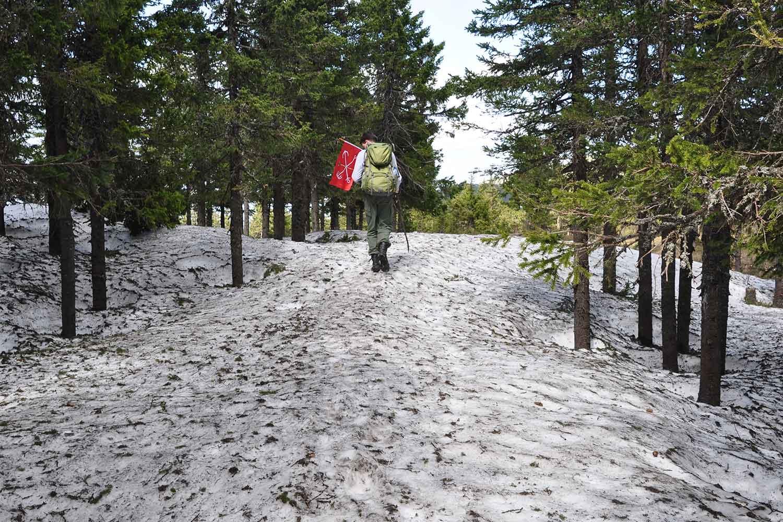 Снежные тропы
