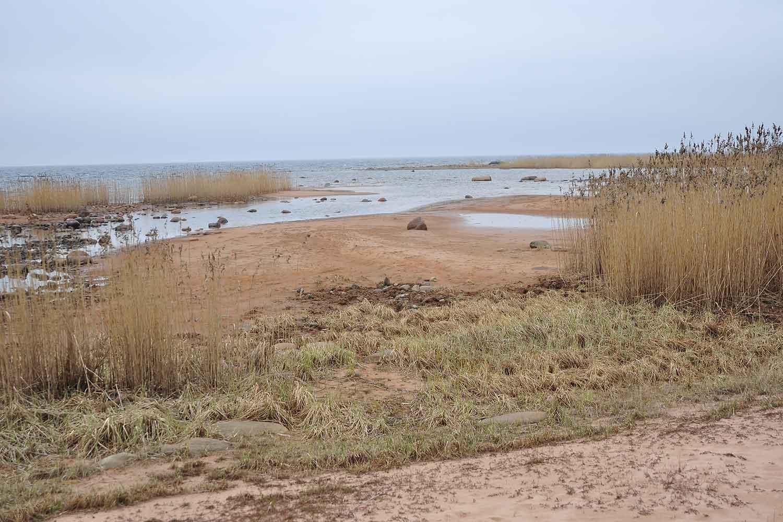 Восточный берег острова Коневец