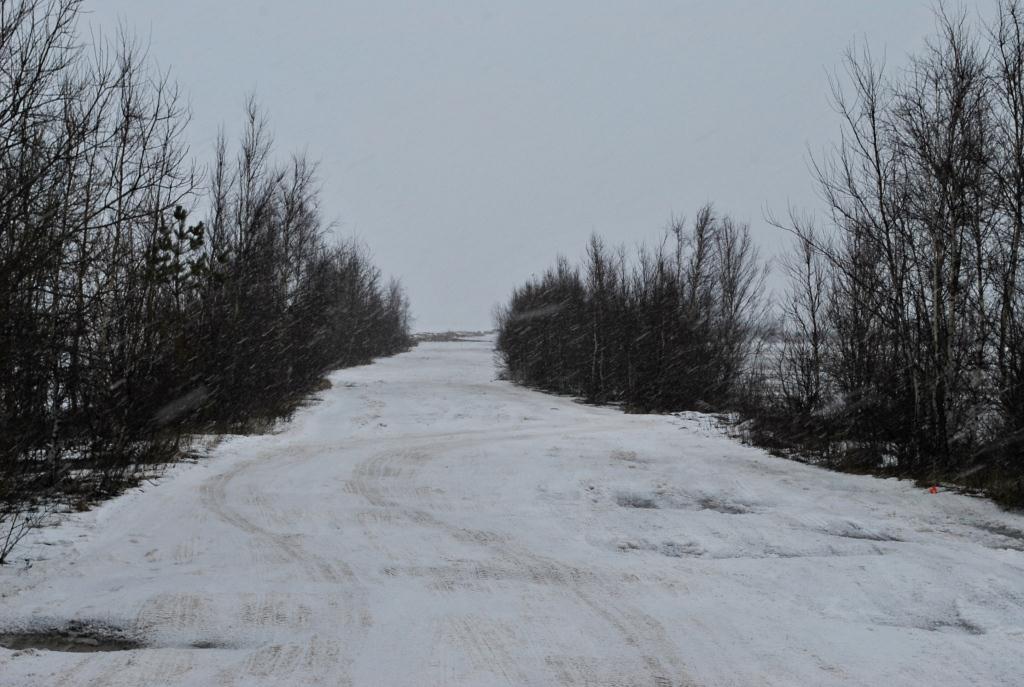 Дорога на форт