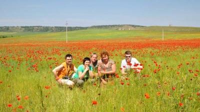 Маковые поля на пути из Симферополя в Севастополь