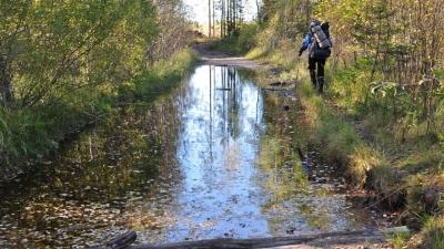 Дорога к озеру Желанное
