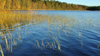 Озеро Желанное (Суммаярви). Наши дни