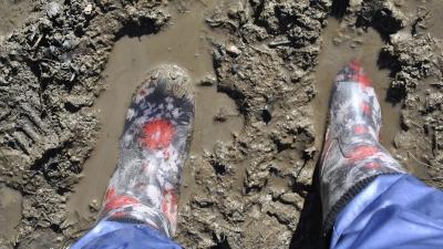 Туристы грязи не боятся!