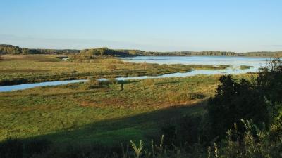 Михайловское. Вид на реку Сороть и озеро Кучане