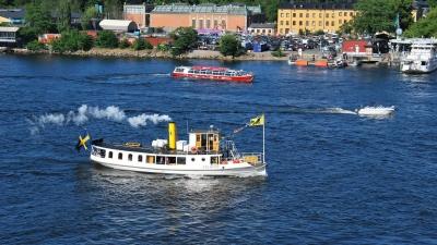 Москитный шведский флот