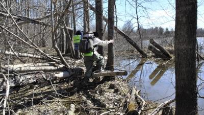 Полоса препятствий у Новонивского озера