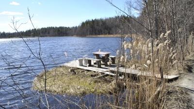 Место для vip-рыбалки на Окуневском озере
