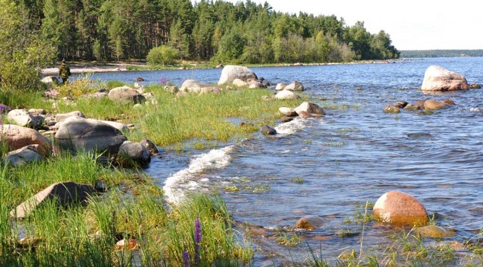 Ладожское озеро. Приозерск